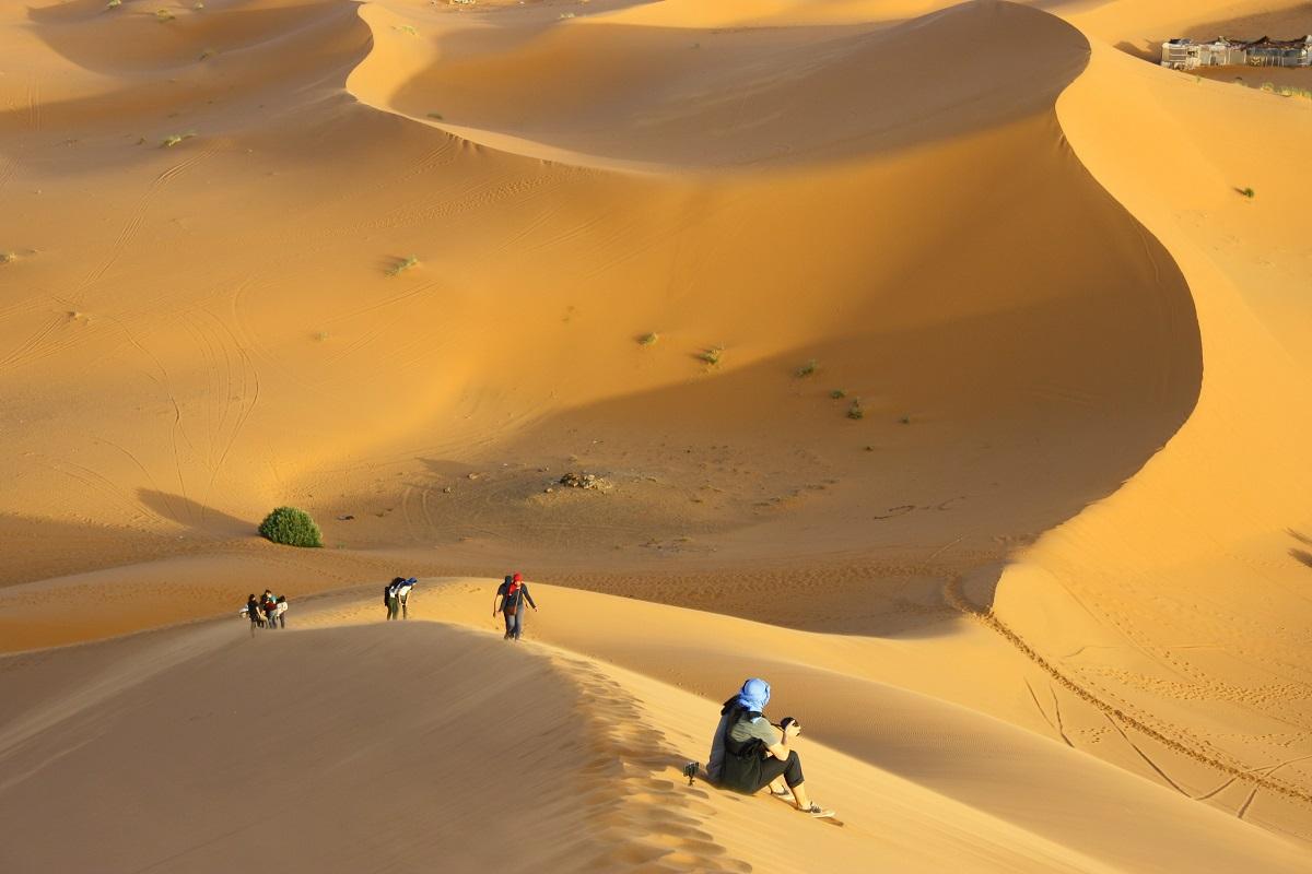 Le Maroc, invité d'honneur   Le fil rouge de la journée (expos, films, rencontres...)