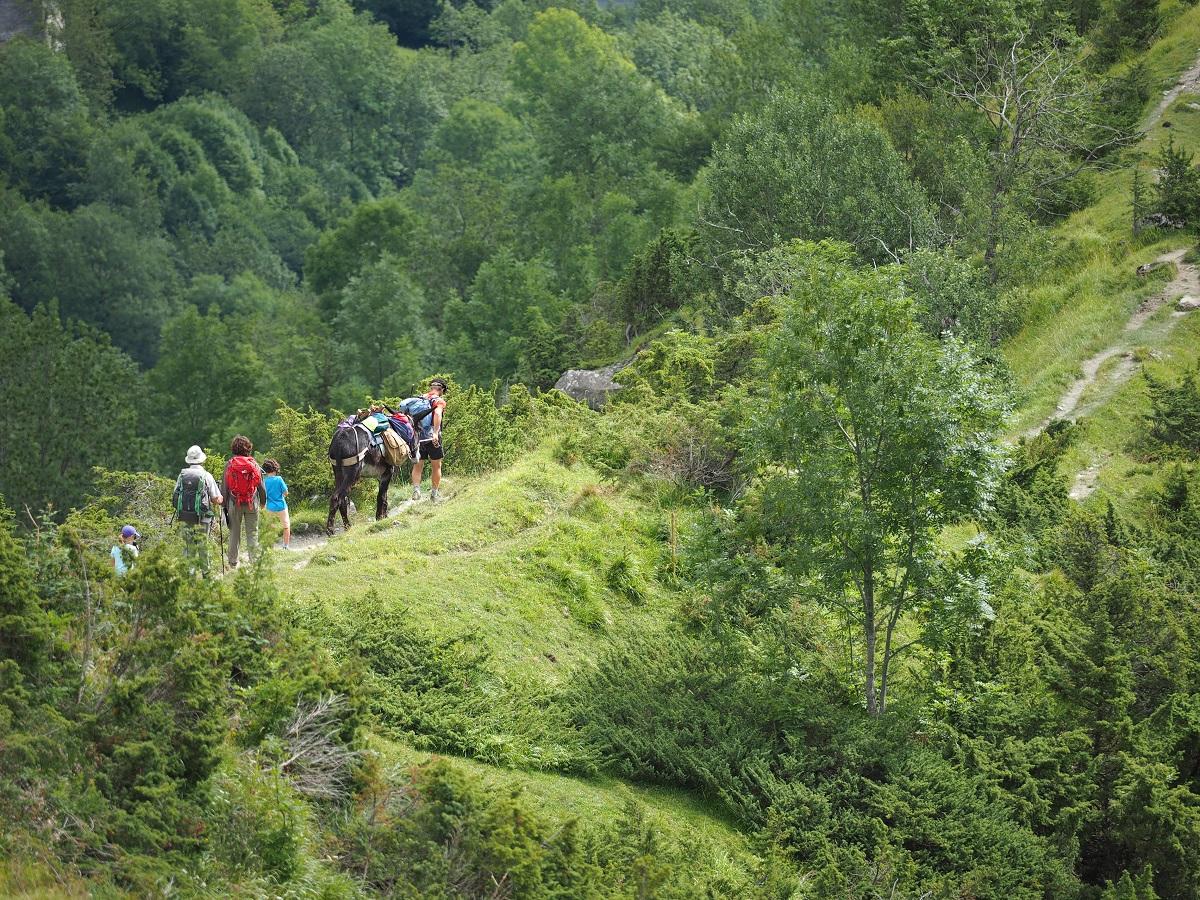 Randonnées accompagnées ou en libre autonomie   Toute la journée (à la journée, à la demi-journée, sorties trail)